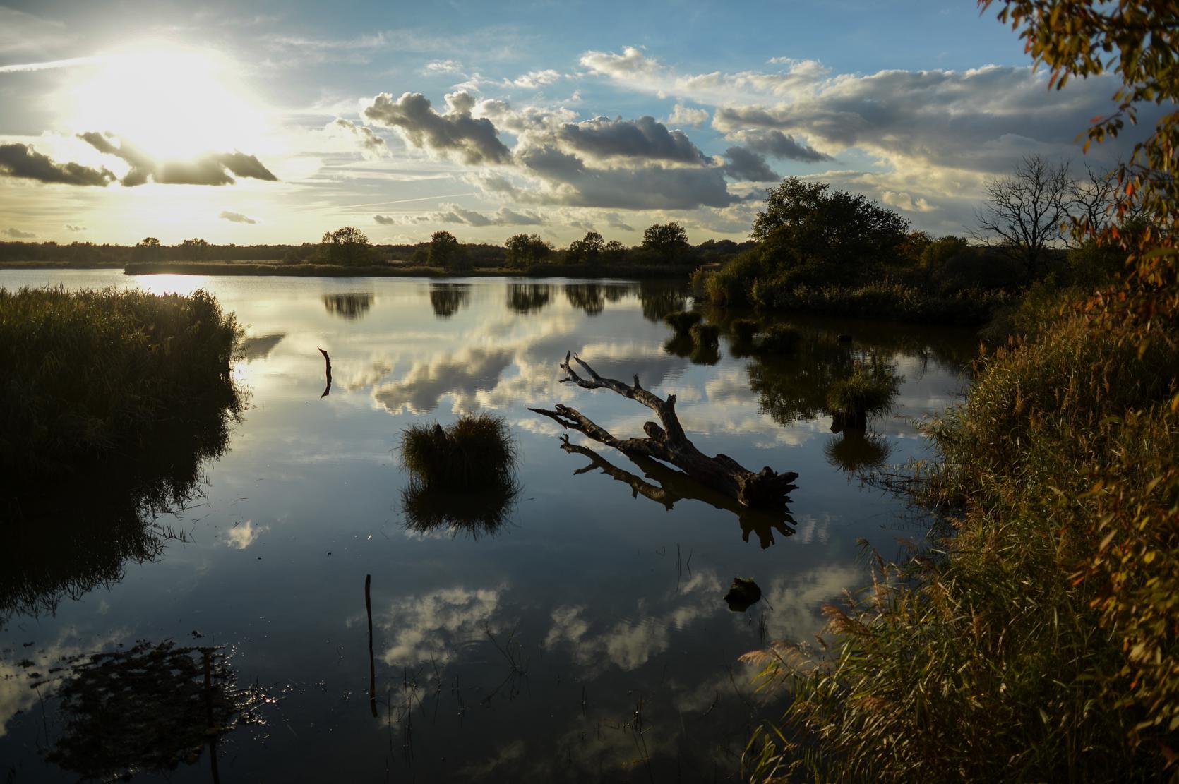 étang en Brenne ©Benjamin Loiseau