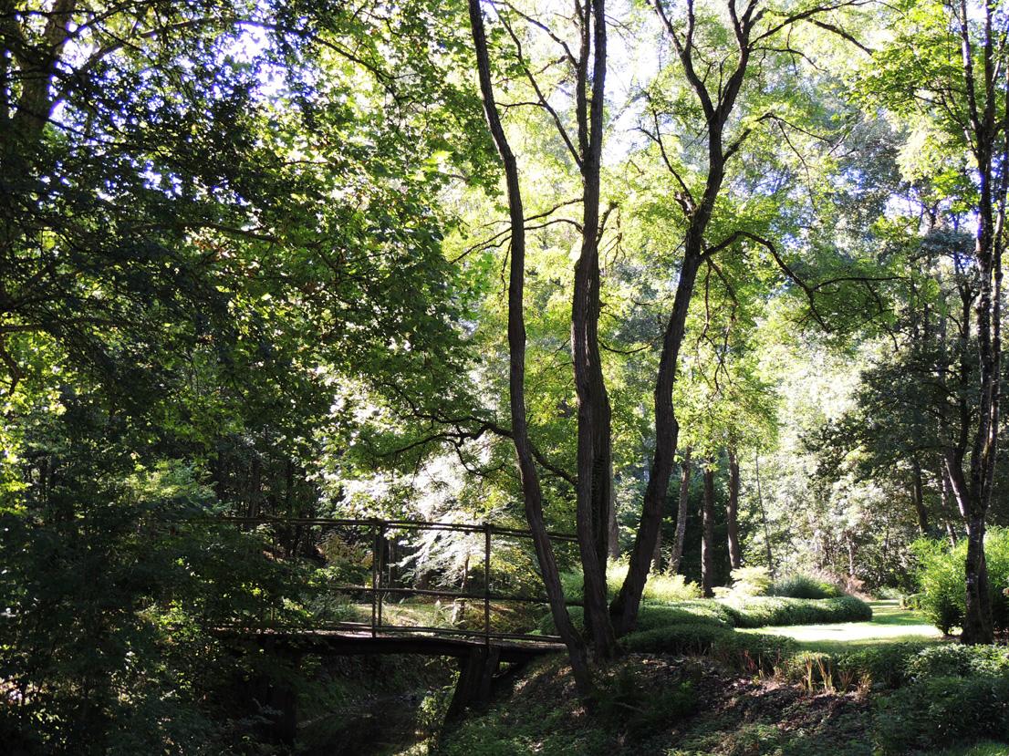 Arboretum de Poulaines