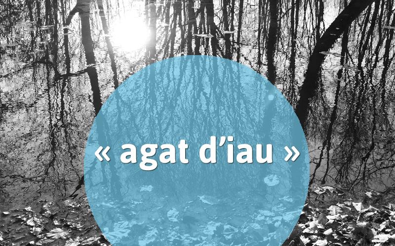 agatdiau