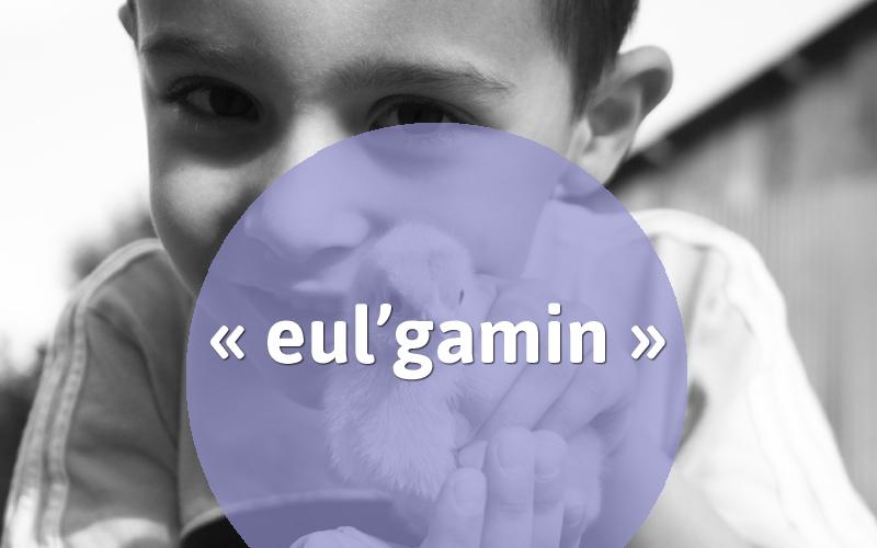 eulgamin
