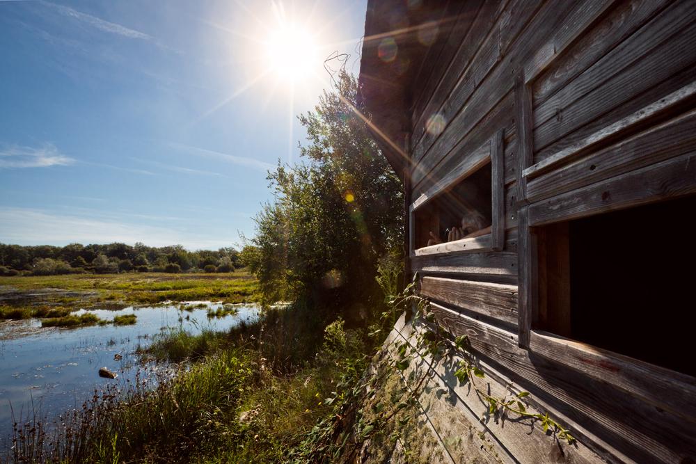 Observatoire près d'un étang de Brenne - © A. Amiot