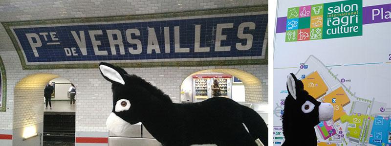 Porte de Versailles tout le monde descend, un coup d'oeil sur le plan et c'est parti !