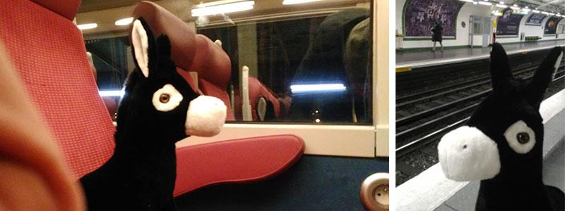 Tobby à pris le train à l'aube pour rejoindre le Salon de l'agriculture avant de s'autoriser un petit selfie dans le métro