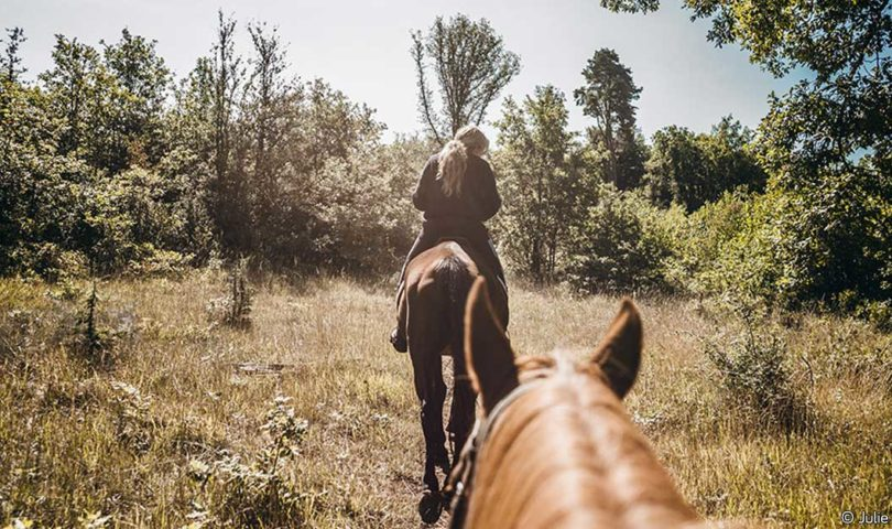 La Brenne à cheval au pays des fées - Berry Province