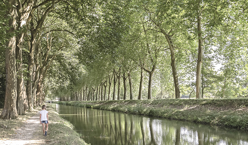 Canal de la Sauldre en Sologne ©A. Gressin