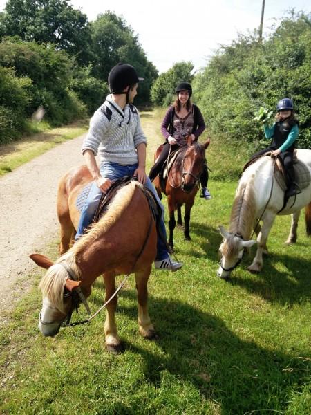 A la moindre petite pause, les chevaux ne manquent jamais une occasion de se nourrir ©K Lauron