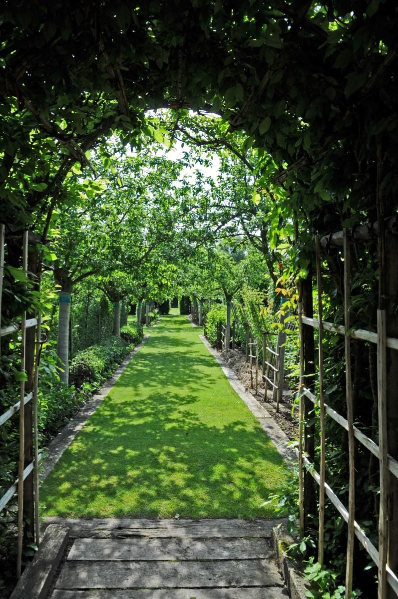 les jardins du prieuré d Orsan© photo P Régnier (3)
