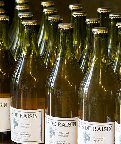 orsan bouteilles-jus-raisin