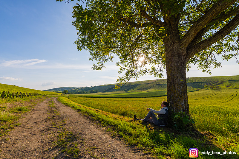 Magnifiques paysages de campagne en Berry ©Teddy Verneuil