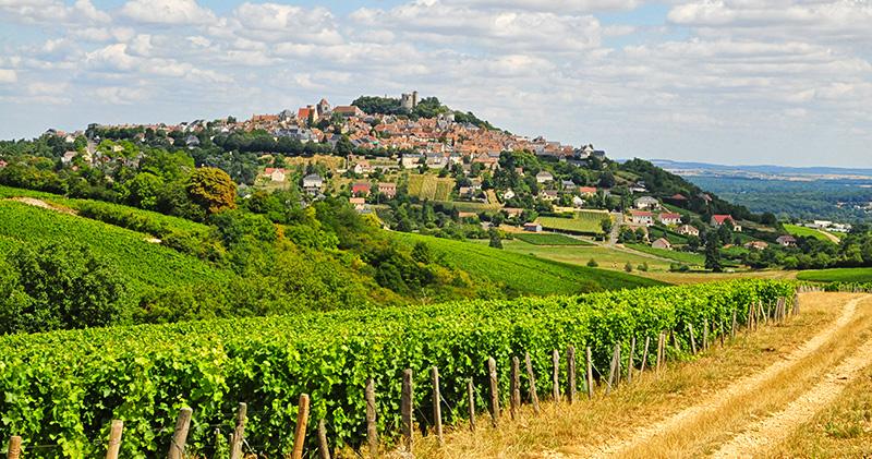 Vignoble de Sancerre ©Ad2T - P. Régnier