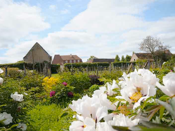 Drulon jardins de bacchus