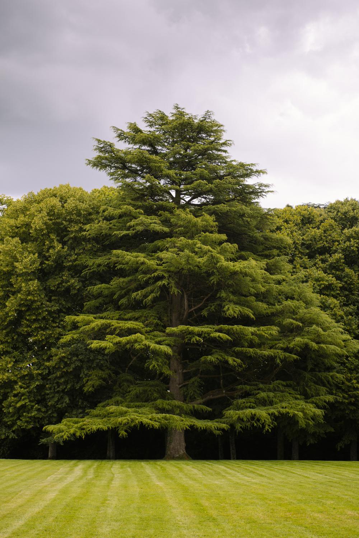 Parc du château d'Azay-le-Ferron - © Gillard et Vincent