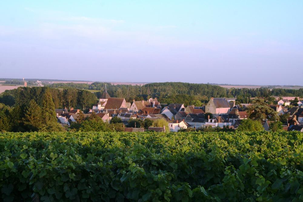 Reuilly au coeur du vignoble AOC - © ADTi