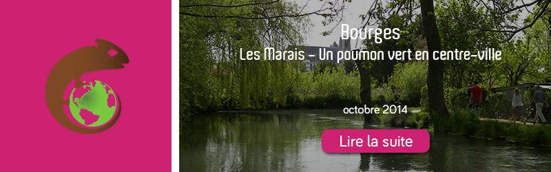 kameleon-bourges-octobre-2014