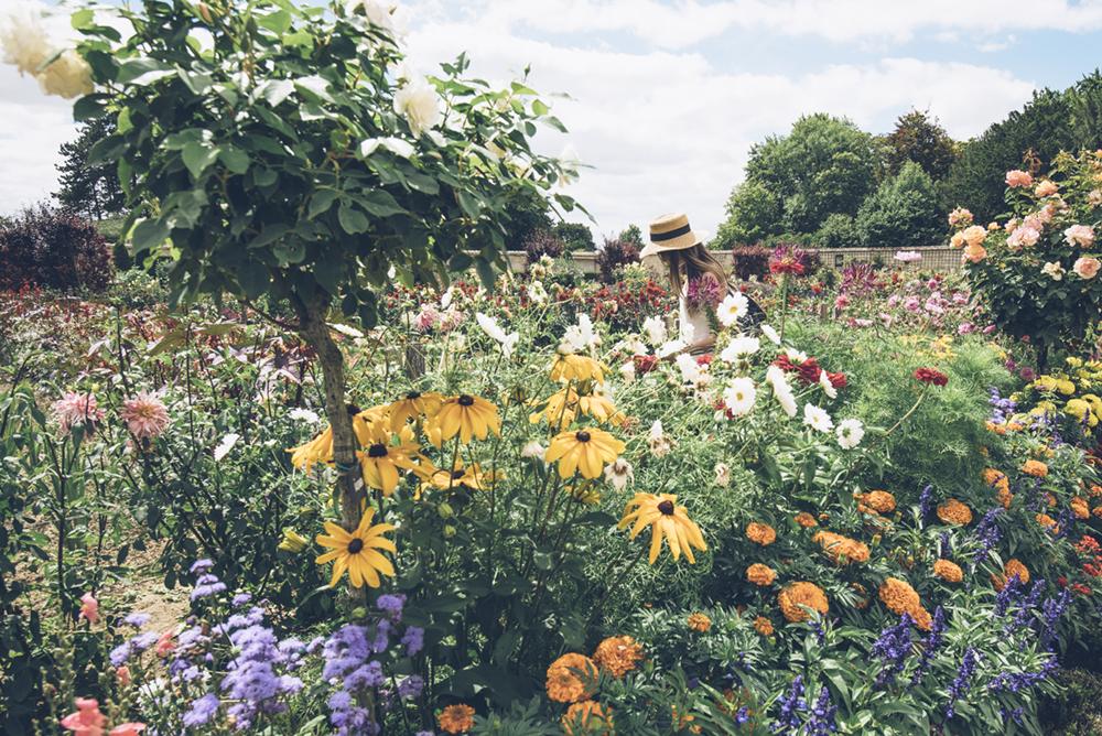 jardin bouquetier de Bouges -© Bestjobers / Max Coquard