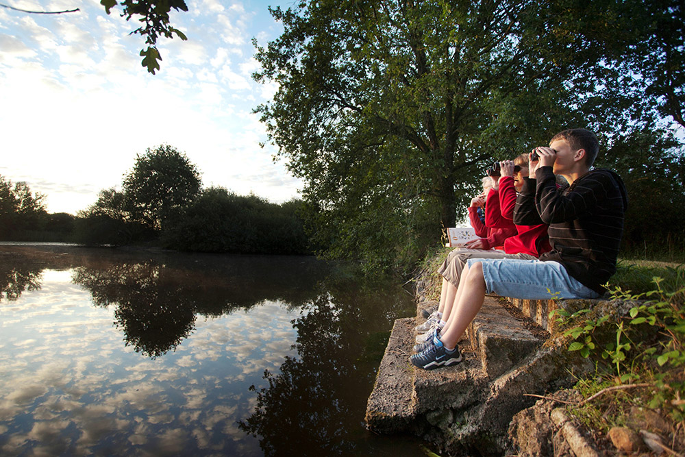 Observation de la nature en Brenne © Hellio et Van Ingen