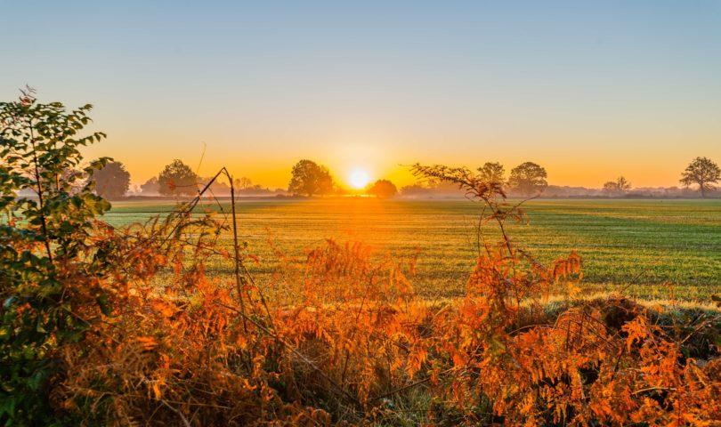 lever de soleil sur les champs ©Teddy Verneuil
