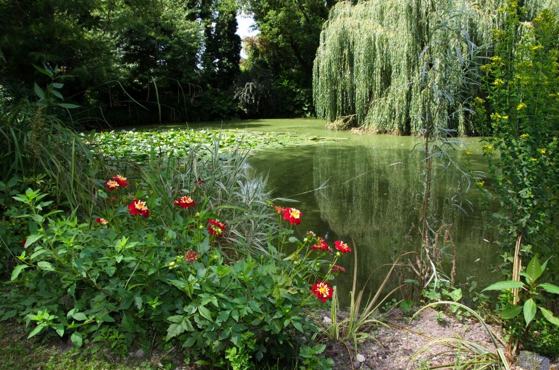 jardins JEP Issoudun ©alain Pitault