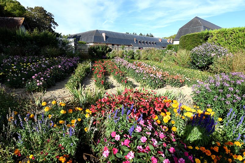 Jardin bouquetier du Château de Bouges-©J Zucchet