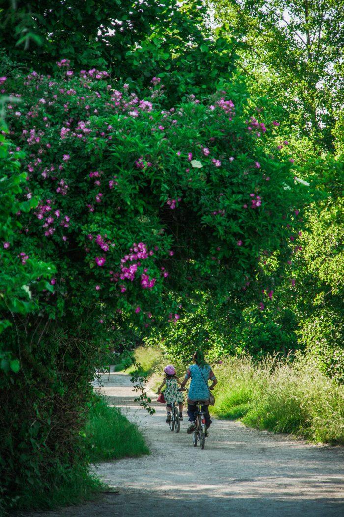 Marais de Bourges à Vélo ©Ad2t
