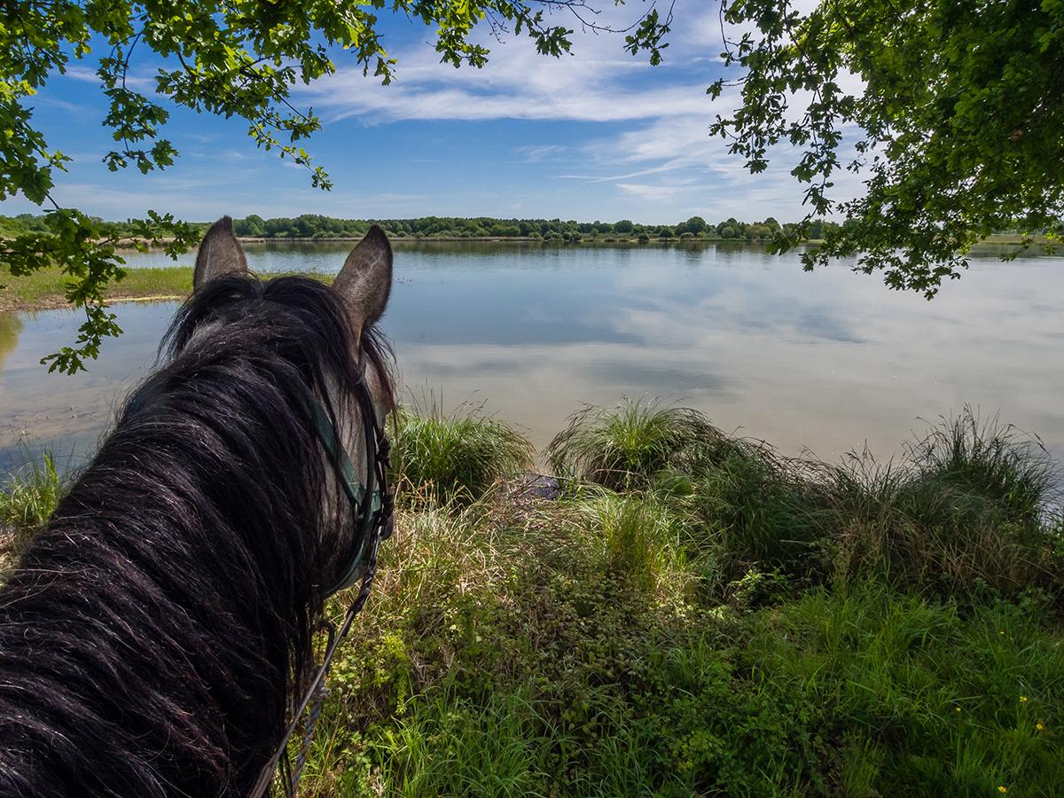 La Brenne à cheval © Carnet d'escapade / Laurene Philipot