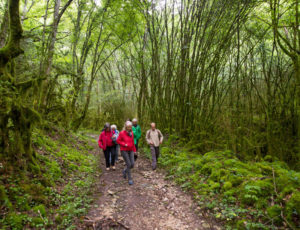 Entre falaises et coteaux de l'Anglin – Par le sentier muletier