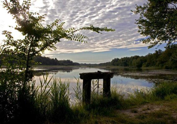 Le ruisseau de l'Ozance – Etang Vieux et sa bonde