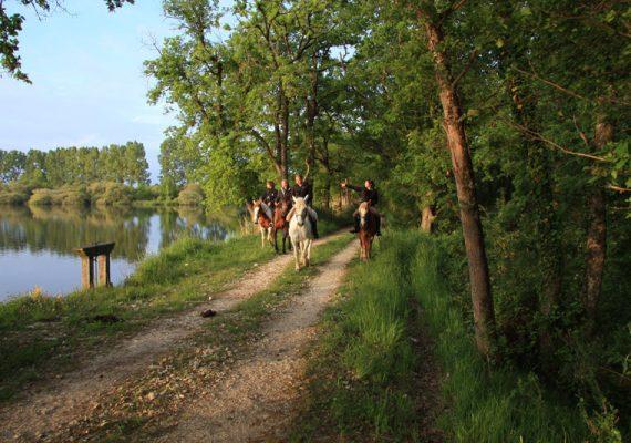 Grand tour des étangs de la Brenne