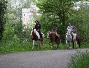 2012-05-accueil-presse-cheval-Figaro-mag-cc173