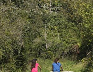 2014-09-HVI–Maison-du-Parc-12-AN-34182