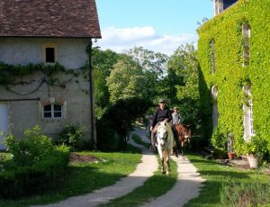 Cheval au Manoir de Saint-Victor
