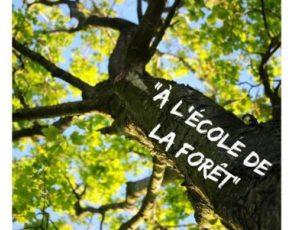 2019-07-Ecole-de-la-foret-2