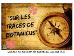 2019-07-Tresor-botanicus-2