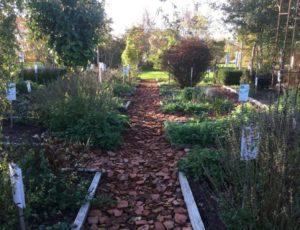 30-le-jardin-officinal