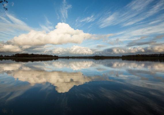 D'un étang à l'autre – Entre ciel et eau