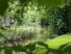 Balade entre la Claise et le Chambon – En bord de Claise