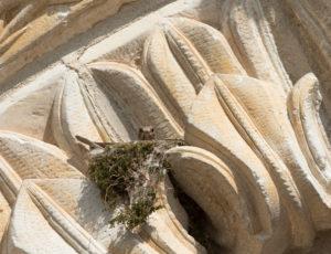 Une église romane entre Boischaut et Brenne –