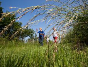 D'un étang à l'autre – Herbes hautes, herbes courtes
