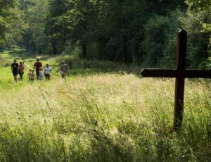Le ruisseau de l'Ozance – En arrivant à la croix du Chaussé