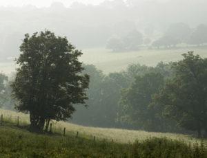 La vallée de l'Abloux et ses forges – Vue sur le bocage