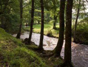 Les coteaux de l'Abloux – Bord de rivière