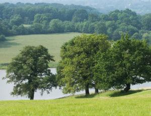 Les coteaux de l'Abloux – Vue sur le paysage