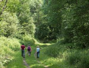 Le moulin de Saint-Civran – Sur les chemins