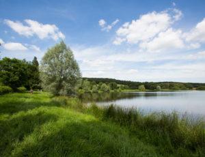 Mosaique bocagère – Vue sur l'étang communal