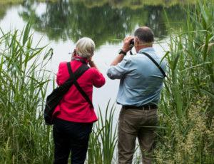 Rencontre avec les paysages de Brenne – Au bord de l'étang