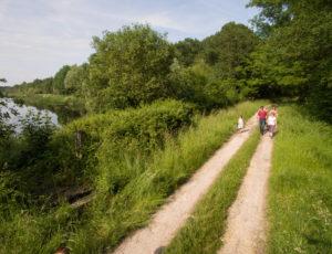 Le ruisseau de l'Ozance – Vers l'étang du Chaussé