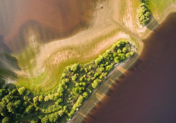 Etangs, forêts et buttons – Etang vue du dessus