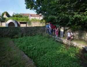 La fontaine de Saint-Aigny – La cressonnière en bord de Creuse
