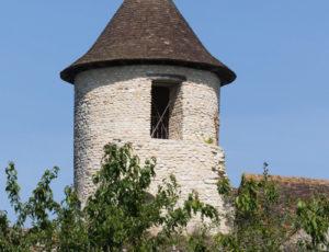 Par les sentiers boisés – Tour du château d'Ingrandes