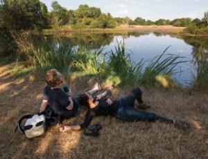 Etangs, forêts et buttons – Pause en bord d'étang